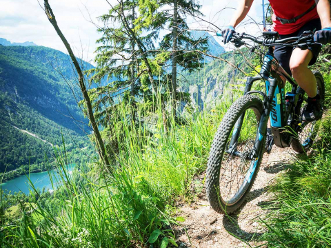 Carina_Bike_Giant_Thumsee.jpg